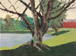 treebypond-983241888-o