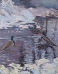 ducks-1200