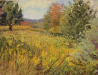 meadow-1200