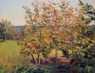 turningtrees-1200