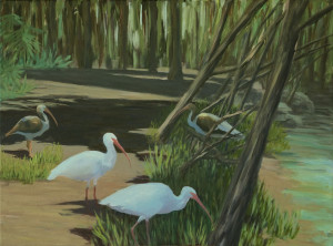 "White Ibis GroupAdult and Juvenile 18x24"", Acrylic on canvas$700"