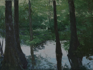 Louisianna Swamp#112x16,oil on canvas
