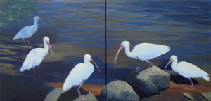 "Five White Ibis diptych, 20x40"", acrylic on canvas"
