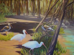 Ibis Group, Adults and Juveniles, acrylic on canvas, 18x24, $700